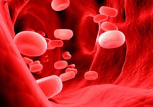 Dottor Tulp. Dieta dei gruppi sanguigni: nessun fondamento scientifico certo