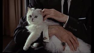 007-Dalla-Russia-con-amore-Il-gatto-di-Blofeld-della-Spectre