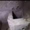 Cultura. Pompei, scoperta rara tomba di un bimbo da missione internazionale