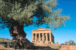 La lettera. Gli attacchi qualunquisti alla Sicilia e gli investimenti che latitano al Sud