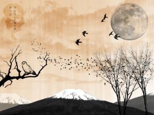 """Libri. """"La teca di cristallo"""" di Notarangelo: versi liberi tra haiku e Ungaretti"""