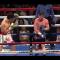Boxe. El Canelo Alvarez supera Chavez jr e sfida il kazako Golovkin