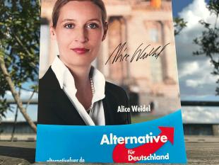 Il caso. Due tedeschi su tre sono contro l'ostracismo verso l'AfD