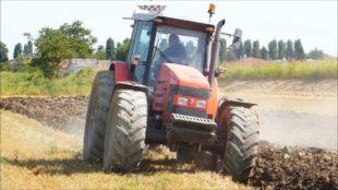 Economia. L'agricoltura affascina i giovani che sanno creare lavoro e nuovi mercati