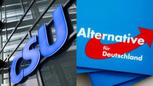 Il punto. La crescita dell'Afd in Baviera e la necessità dell'incontro populisti-popolari