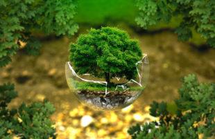 Ecologia. Al di là degli allarmismi, alla politica non interessa nulla dell'ambiente?