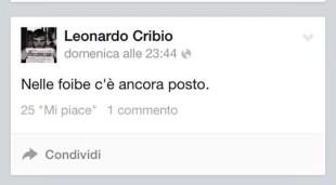 cribio 11
