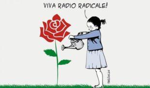 La lettera. Radio Radicale può essere assorbita dal servizio pubblico. Chi pensa alle imprese?